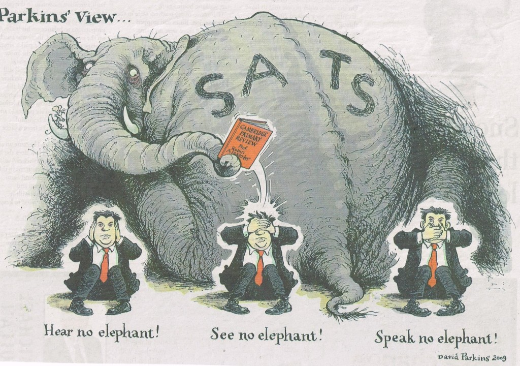 Elephant in the Primary Curriculum